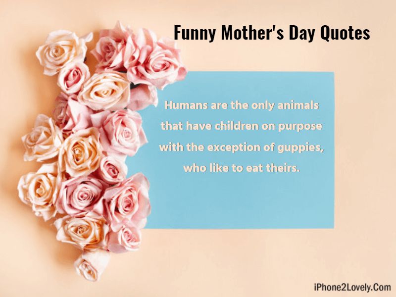 25 Funny Mother\'s Day Quotes and Wishes 2019 - iPhone2Lovely